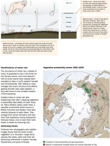 ArcticClimateIssues2011 p57