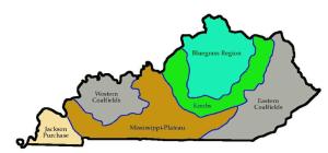 Kentucky2'' regions