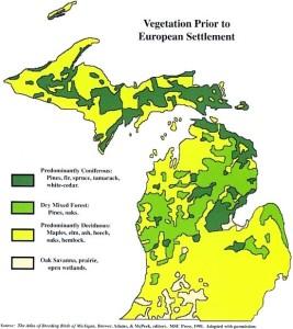 Michigan4 vegetation pr European settlement