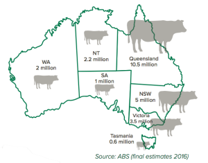 Australia3 beef production states 2017