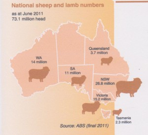 Australia4 sheep-population 2011