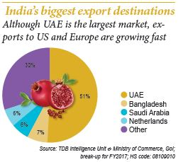Fruits8 Pomegranate India biggest export destinations