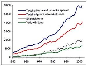 Seafood5 Tuna